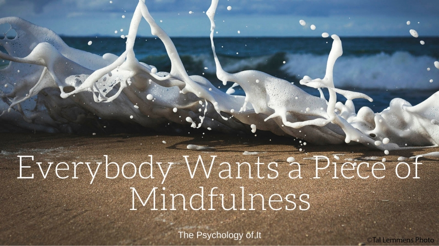 Everybody Wants a Piece of Mindfulness